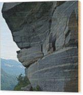 Wild Cat Trap At Chimney Rock Nc Wood Print
