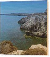 Wild Coast Cyprus Wood Print