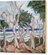 Wild Coast Wood Print
