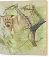 Wild Cougar Wood Print