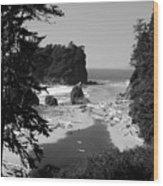 Wild Cove Wood Print