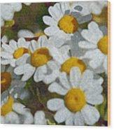 Wild Daisies II Wood Print