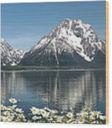 Wild Daisies In The Tetons Wood Print
