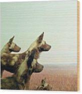 Wild Dog Wood Print