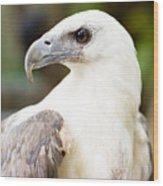 Wild Eagle Wood Print