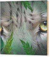 Wild Eyes - Snow Leopard Wood Print