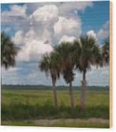 Wild Florida Wood Print
