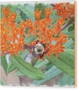 Wild Flowers And Bumble Bees Wood Print