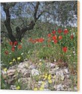 Wild Flowers And Olive Tree Wood Print