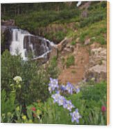 Wild Flowers And Waterfalls Wood Print