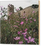 Wild Flowers At The Old Fortress Wood Print