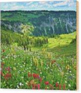 Wild Flowers Blooming On Mount Rainier Wood Print