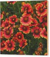 Wild Flowers In Field Color Art Print Wood Print