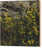 Wild Flowers Wood Print