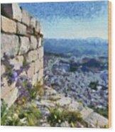 Wild Flowers On Loophole In Palamidi Castle Wood Print
