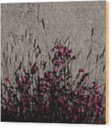 Wild Flowers On The Wall Wood Print