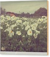 Wild Flowers Soft Wood Print