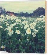 Wild Flowers White Wood Print