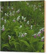 Wild Garden #1 Wood Print