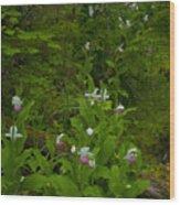 Wild Garden #2 Wood Print