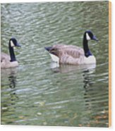 Wild Geese On A Lake 6 Wood Print