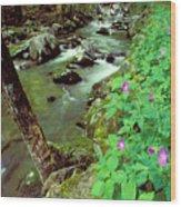 Wild Geraniums On Bradley Fork Wood Print