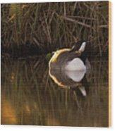 Wild Goose Wood Print