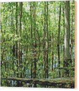 Wild Goose Woods Pond Vii Wood Print