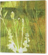 Wild Grass 7 Wood Print