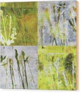 Wild Grass Collage 2 Wood Print