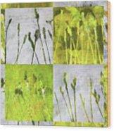 Wild Grass Collage 3 Wood Print