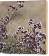 Wild Herbs  #herbs Wood Print
