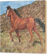 Wild Horse In Virginia City, Nevada Wood Print