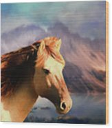 Wild Horse - Painting Wood Print
