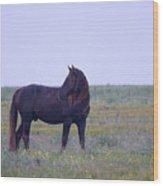 Wild Horses #4 Wood Print
