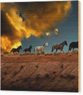 Wild Horses At Sunset Wood Print by Harry Spitz