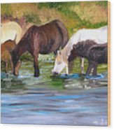 Wild Horses At The Watering Hole Wood Print