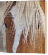 Wild Horses In Wyoming Wood Print