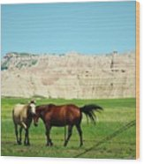 Wild Horses Of South Dakota Wood Print