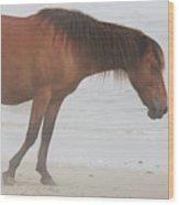 Wild Horses On The Beach 2 Wood Print