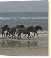 Wild  Horses Run On The Beach Wood Print