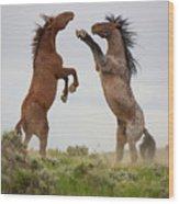 Wild Horse Challenge Wood Print