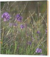 Wild Hyacinth At Sunset Wood Print