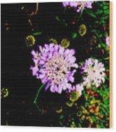Wild Jewels Wood Print