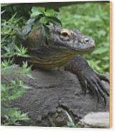 Wild Komodo Dragon Crawling Through Nature Wood Print