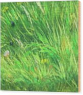 Wild Meadow Grass Structure In Bright Green Tones, Painting Detail. Wood Print