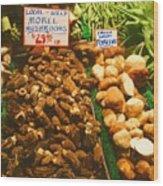 Wild Morell Mushrooms Wood Print