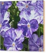 Wild Mountain Flowers Wood Print