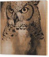 Wild Owl Eyes Wood Print