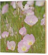 Wild Pastels Wood Print